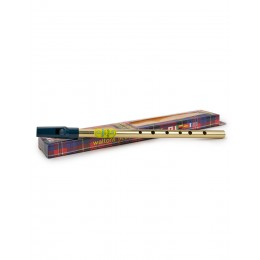 easy to play real tin whistle